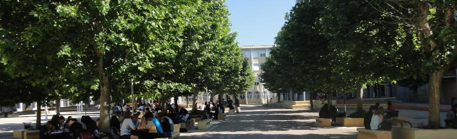 Cour du collège